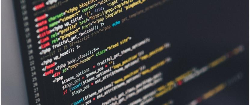 Five Popular Custom Software Development Models